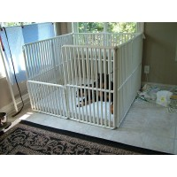 """36"""" High Dog Cages"""