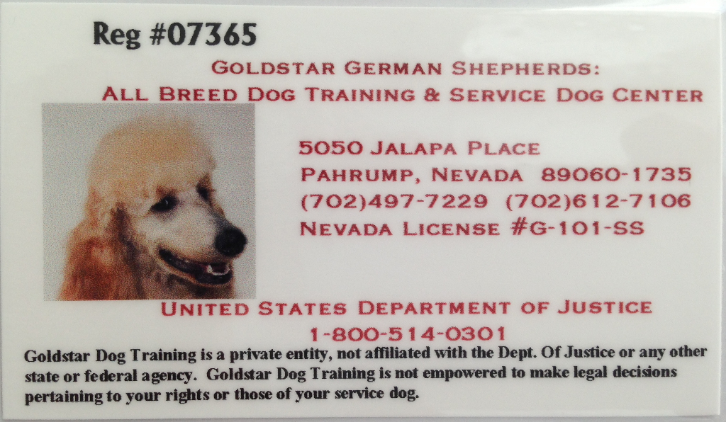 mr-french-service-dog-id
